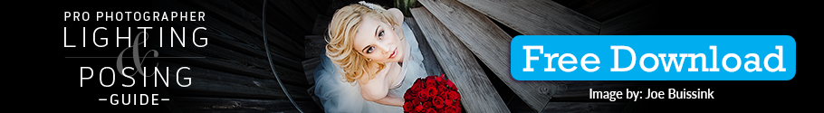 How to Diffuse Light in 4 Easy Ways