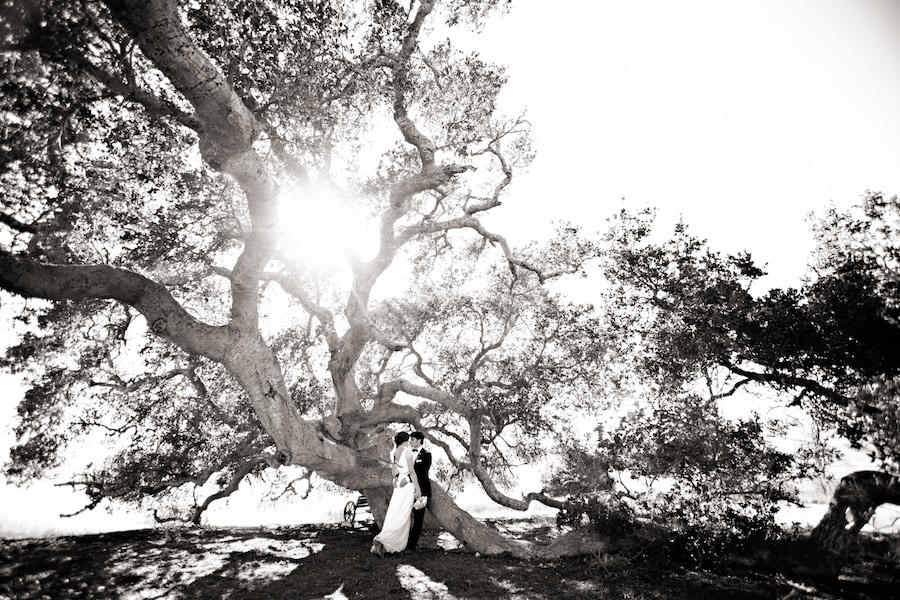 black and white couple outdoor portraits