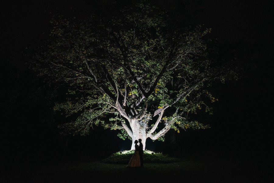 A large tree that is lit up for a wedding photography silhouette image of the couple in an embrace standing in front of the tree.