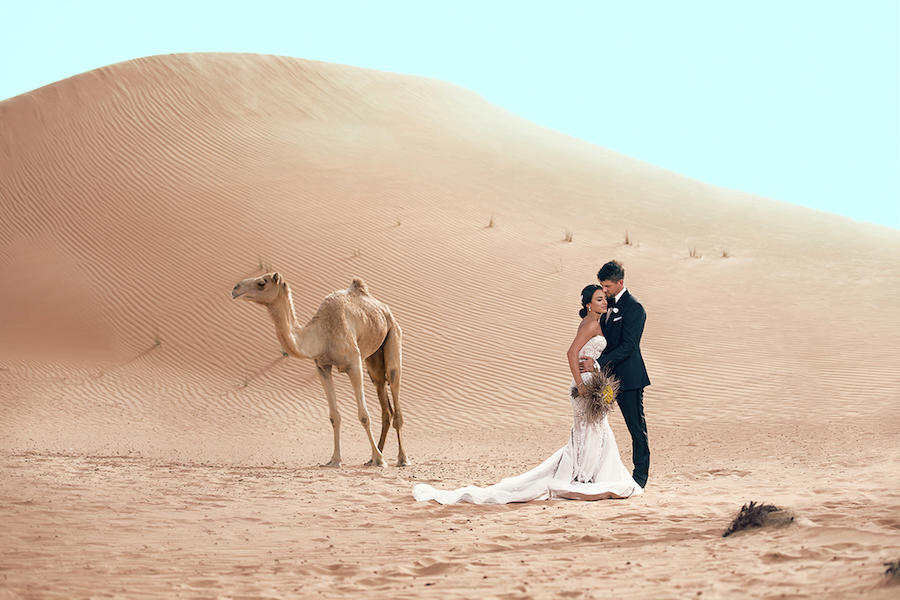 wedding photography in the desert with a camel