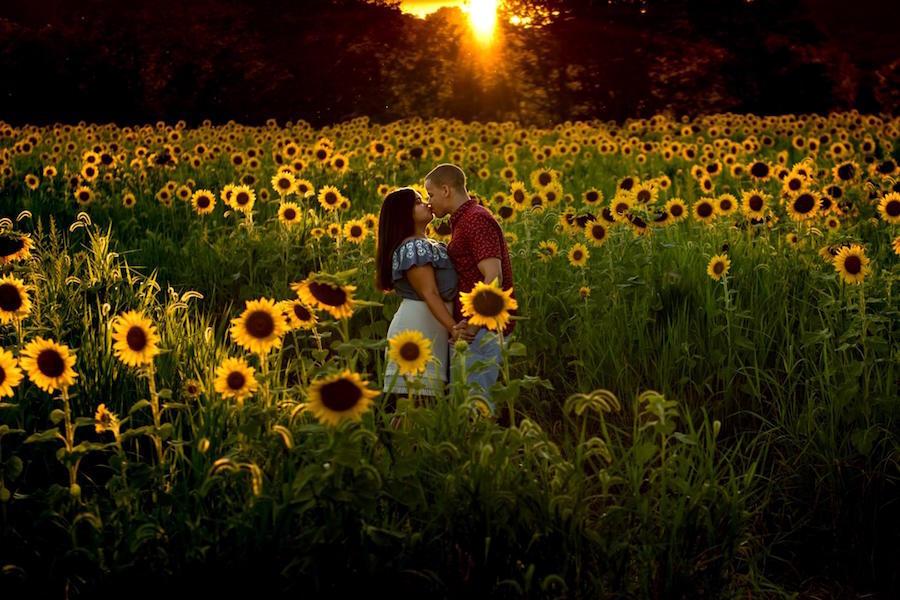 outdoor sunflower engagement photo