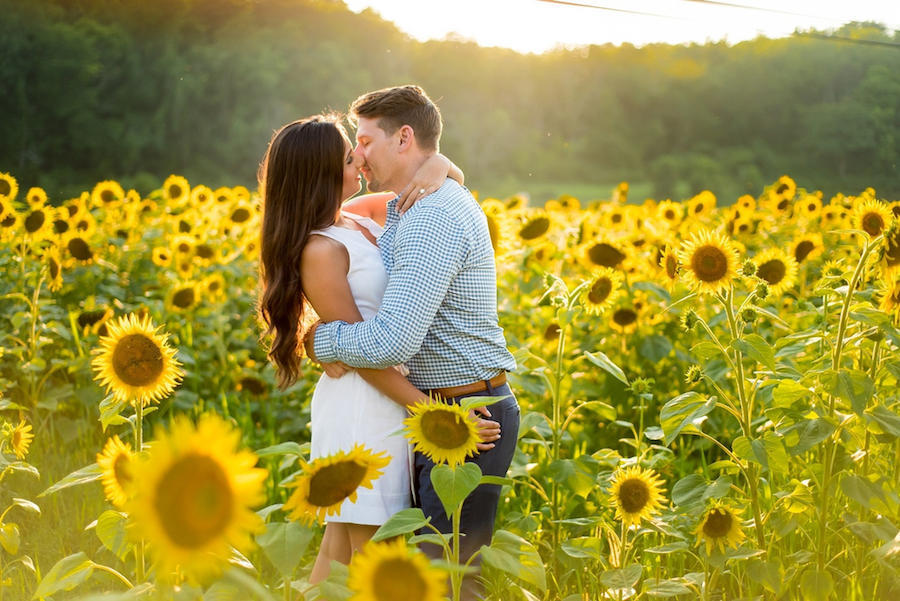 sunflower engagement photography