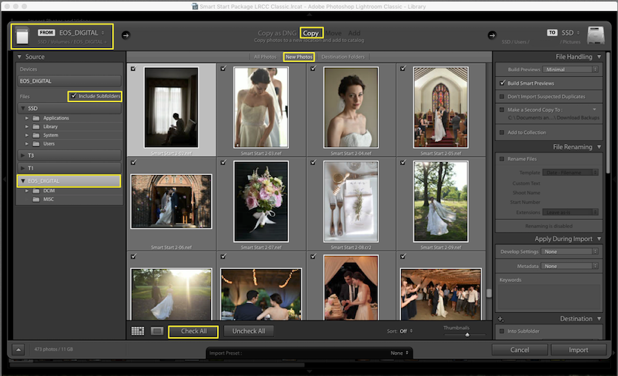 importing raw files into lightroom