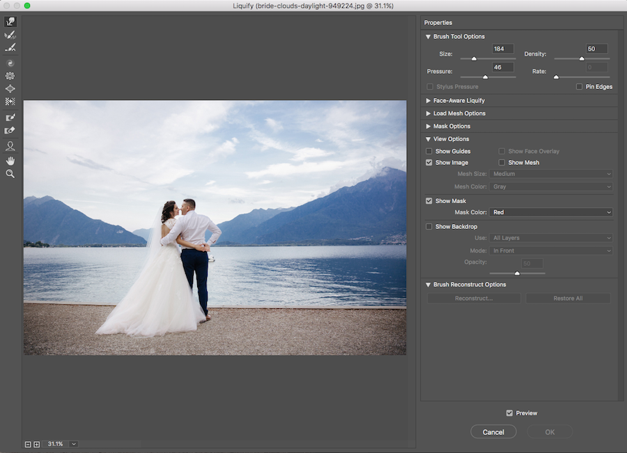 liquify tool dialog box photoshop