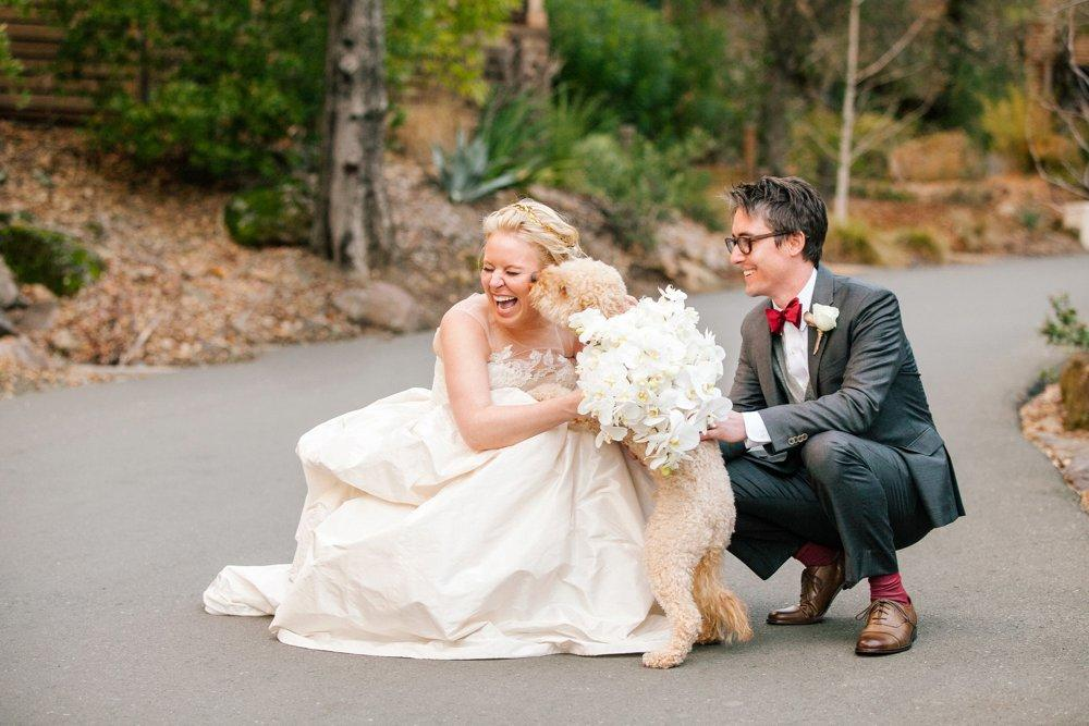 Bride and groom posing with their pet dog - An image on ShootDotEdit wedding vendor feature