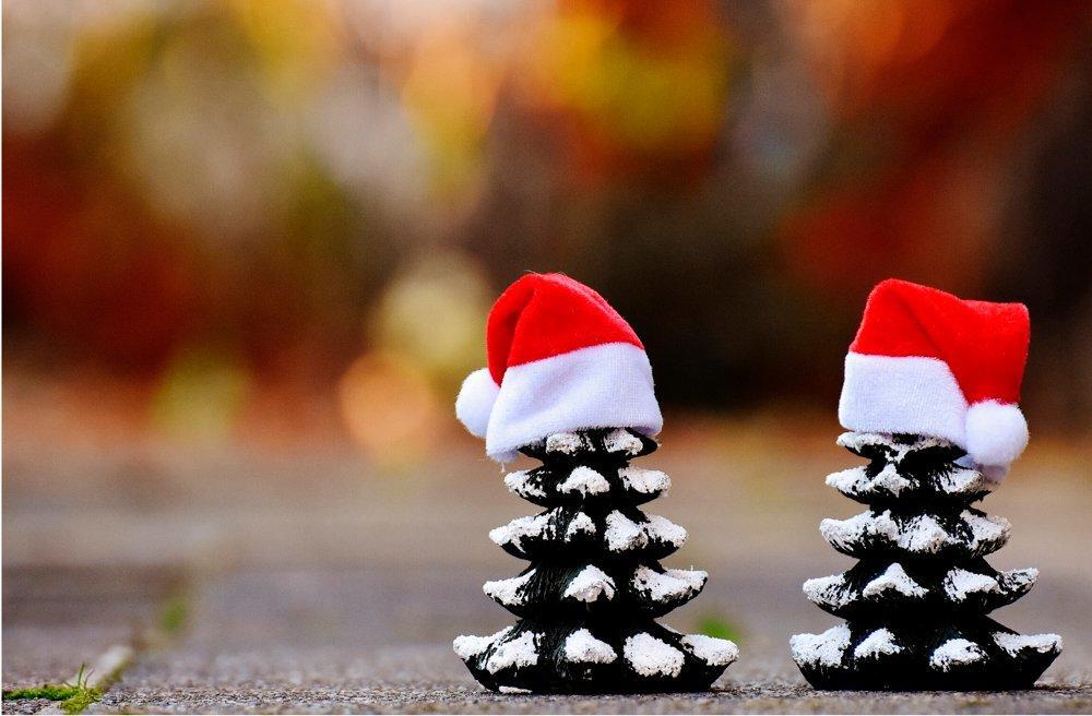 Santa and Holiday Themed Photo Sessions