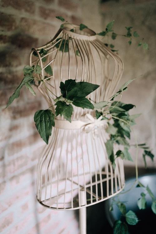 bird cage dress form