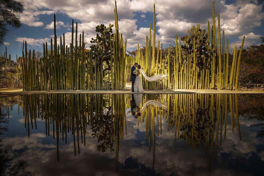 hdr styled image of couple in cactus garden with reflection