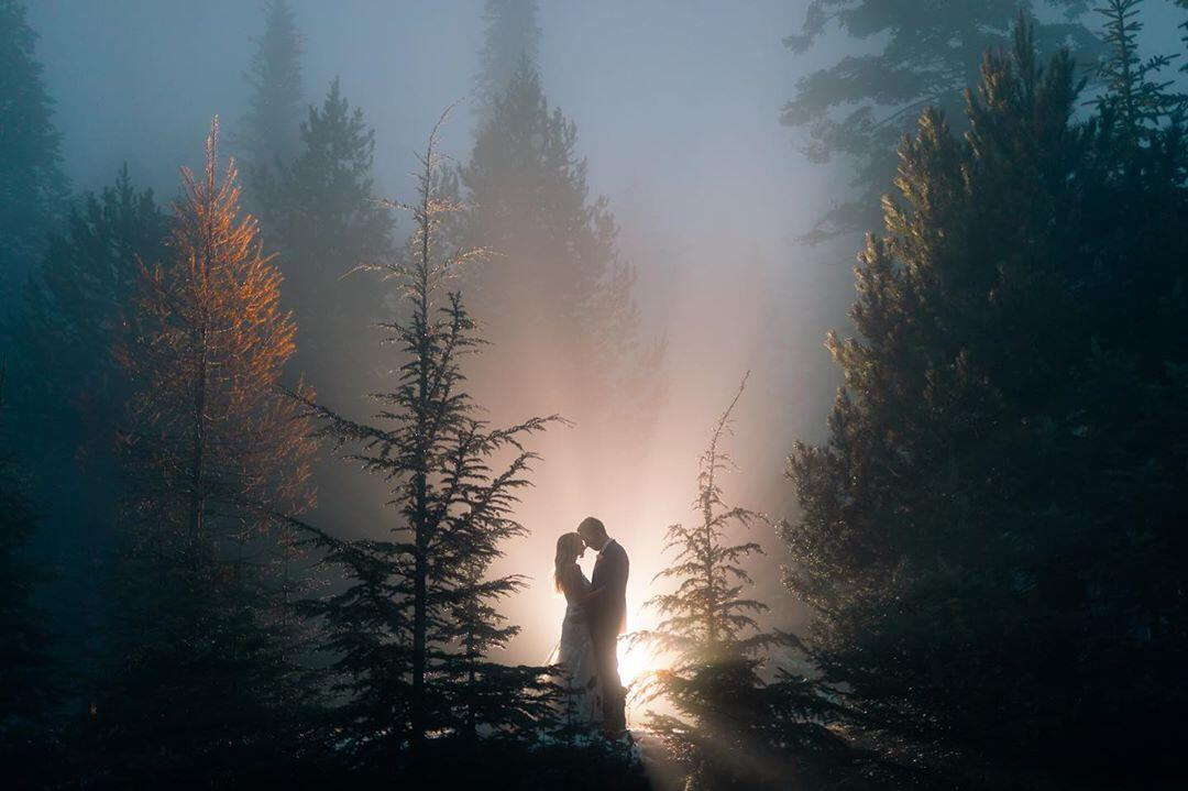 couple forehead to forehead in a fog covered pine forest