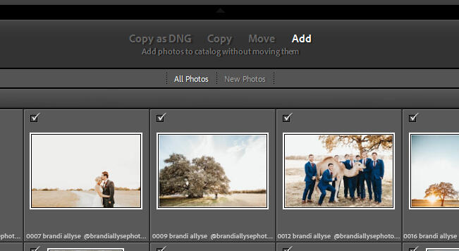 Copy as DNG, Copy, Move or Add Photos options located at the top of the screen
